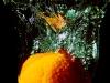 Natte mandarijn